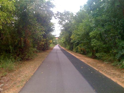 Dual trail