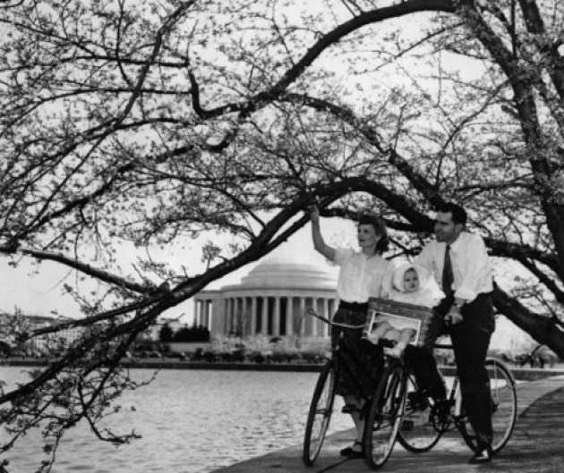 Nixon bike