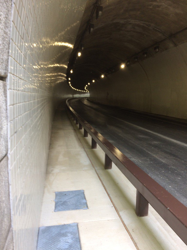 Zoo tunnel