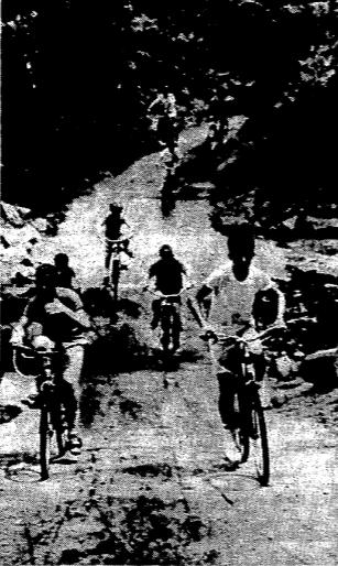 Fourmilerun1967
