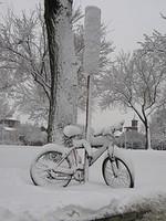 Bike_parking_1