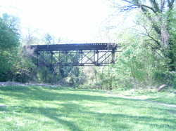 Wgftrestle